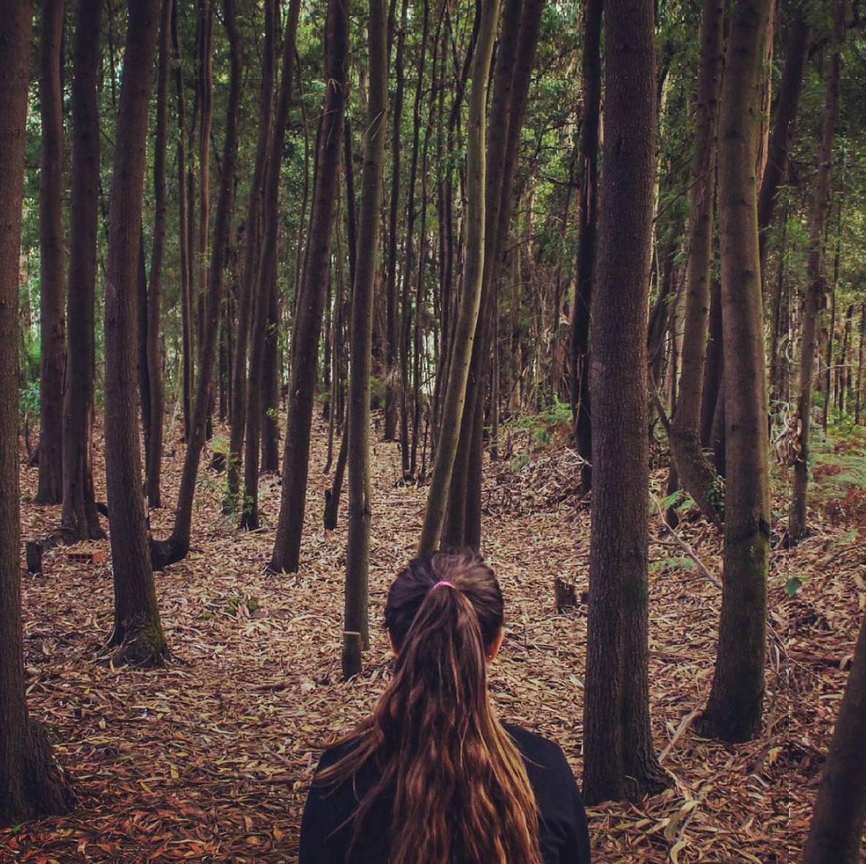 Selene in the forest in Porto, Portugal