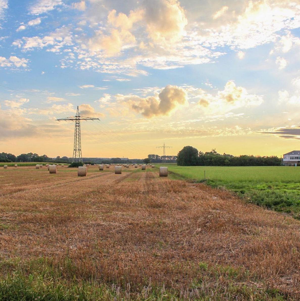 Sunset in German fields