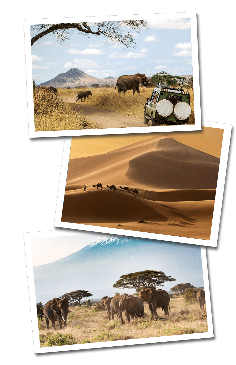 Africa Travel Guide postcards