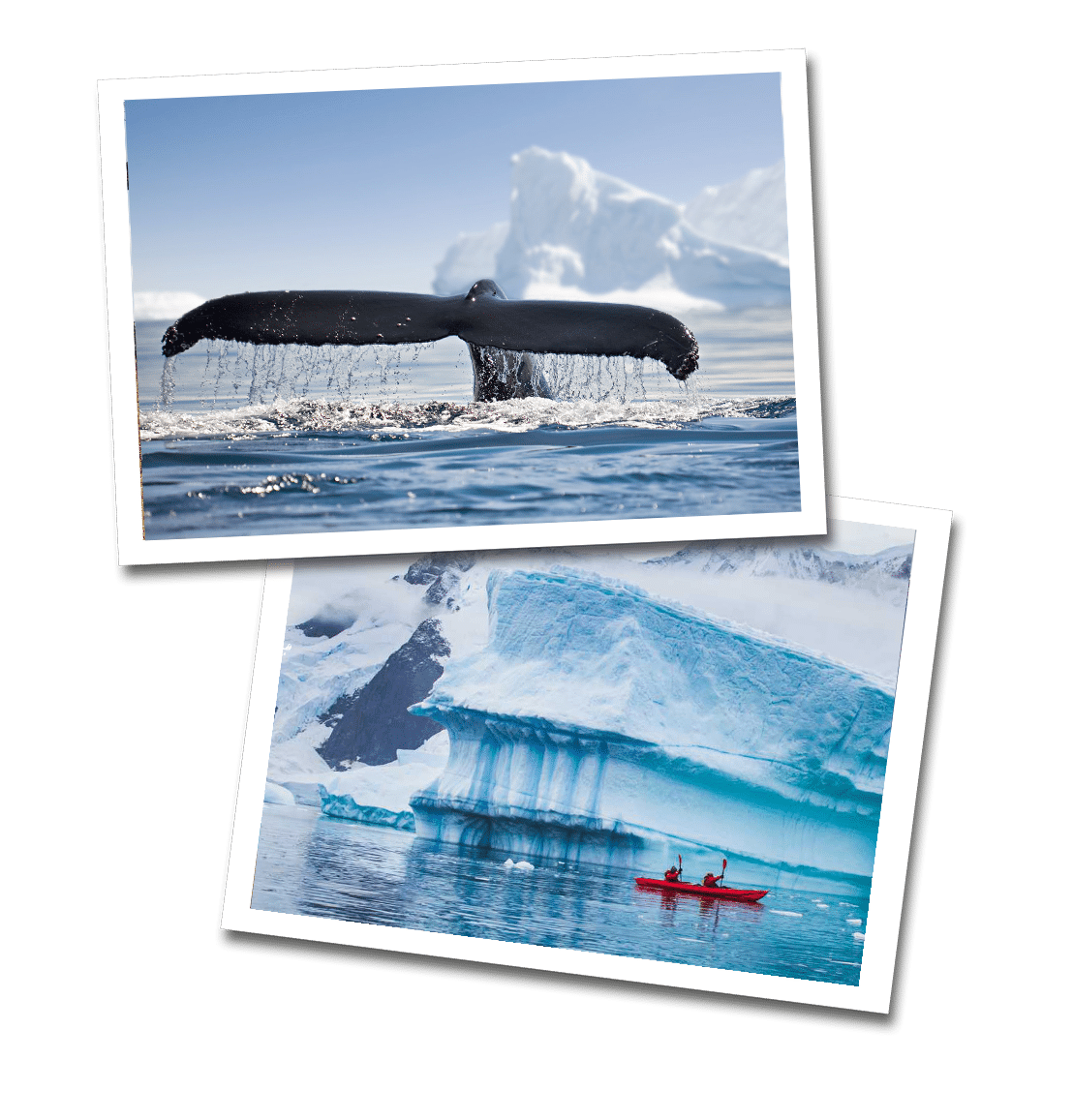 Antarctica Travel Guide postcards