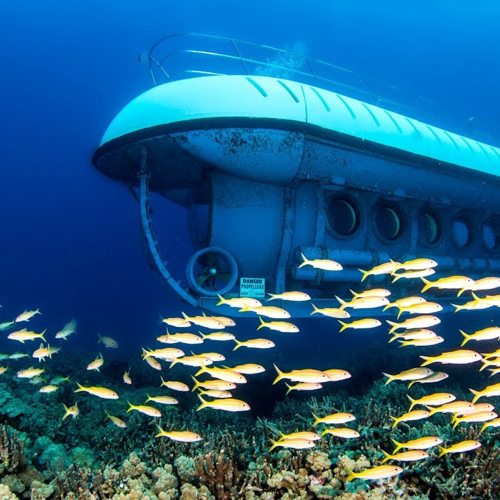 Submarine experience in the caribbean