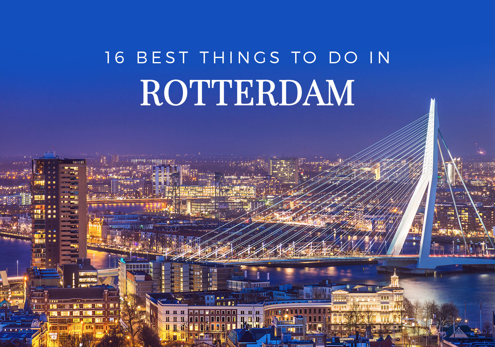 16 best things to do in rotterdam