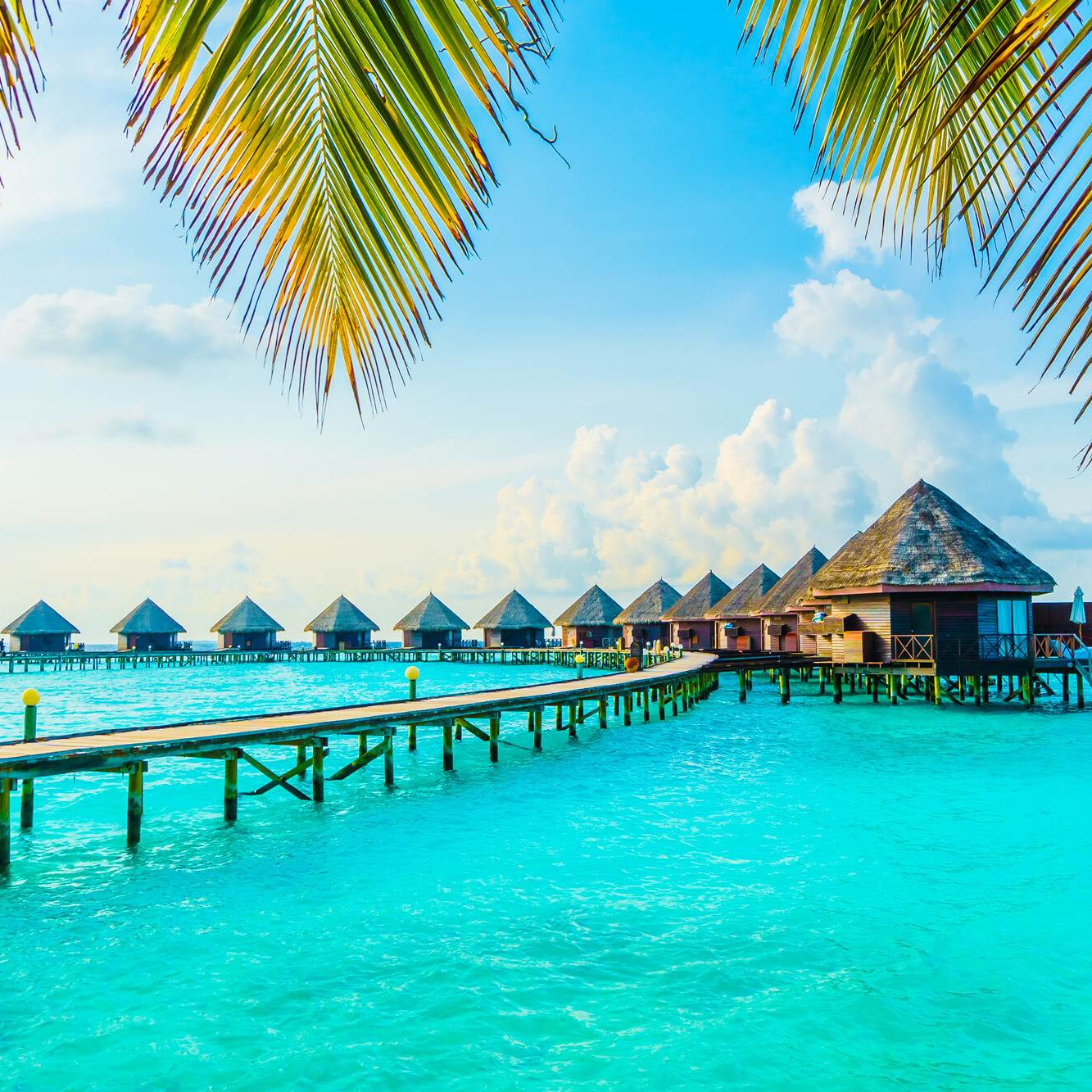 The maldives travel
