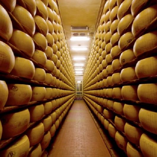 Visit a parmigiano-reggiano factory