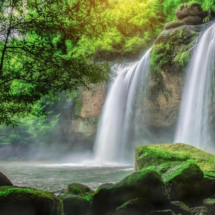 thailand forest and waterfalls