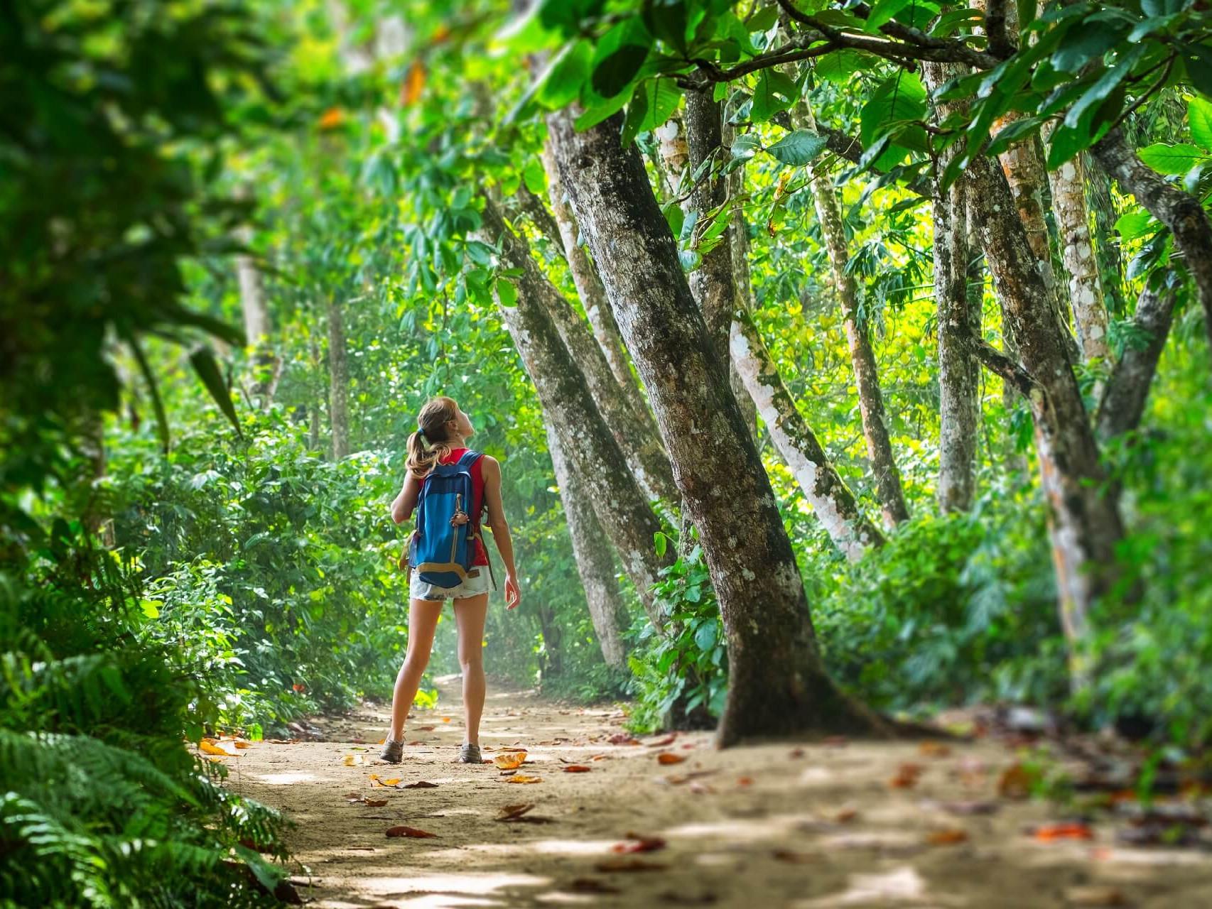 Costa Rica Travel Landscape