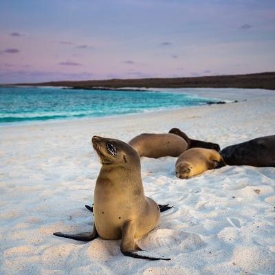 Galapagos island ecuador