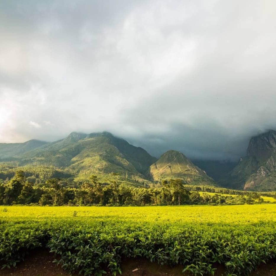 Mulanje Massif malawi