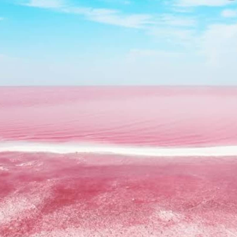 Pink lakes in mexico