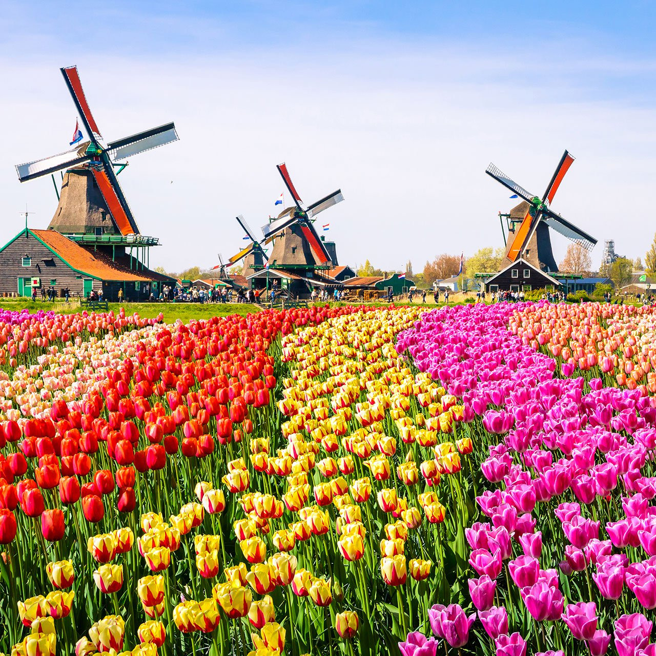 Travel The Netherlands