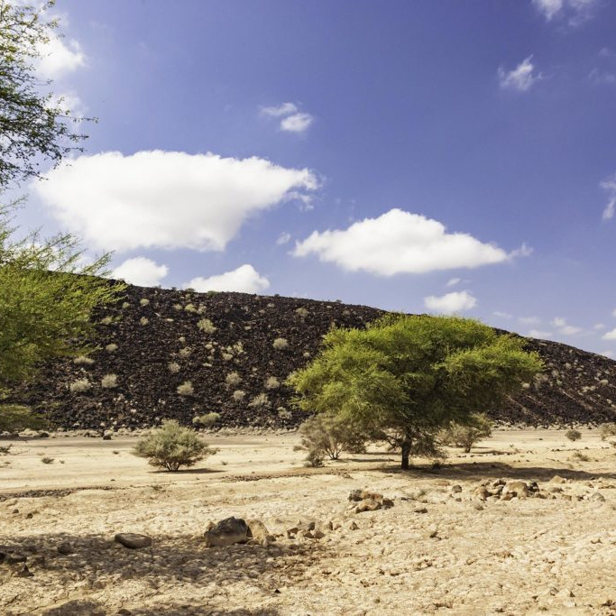 Grand Bara Desert djibouti
