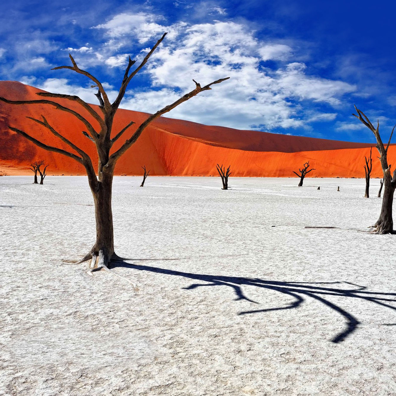 Namibia salt flat Deadvlei south africa travel guide