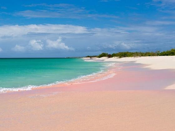 Pink sand beach harbor island bahamas