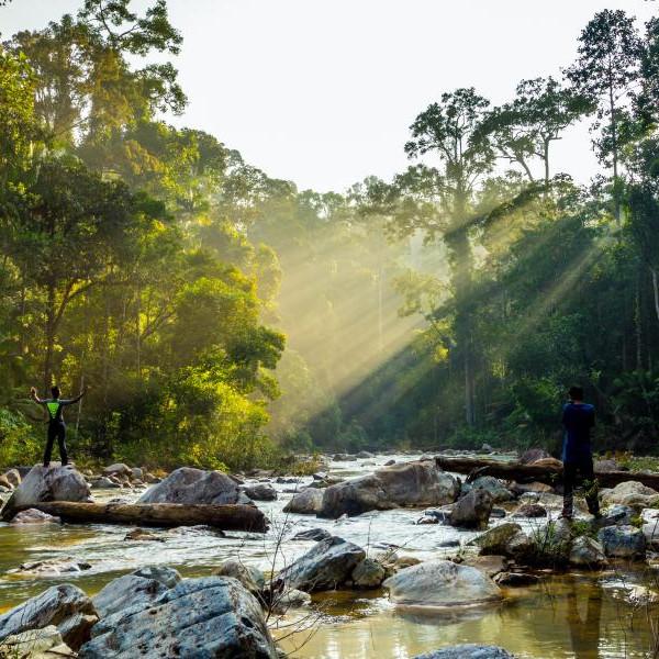Taman negara indoensia