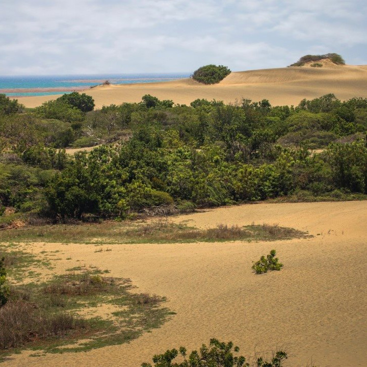 bani dunes dominican republic