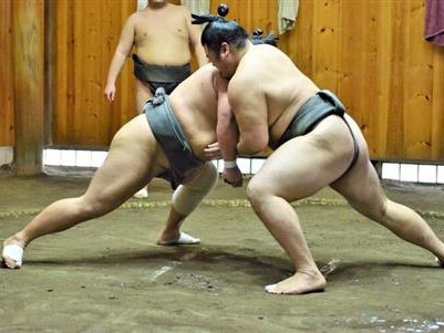 Sumo Wrestling Stable