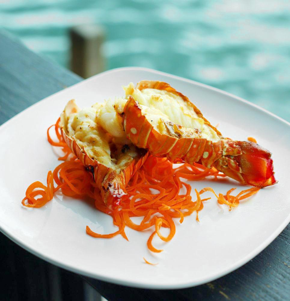 Casablanca seafood bar & grill Miami Dining